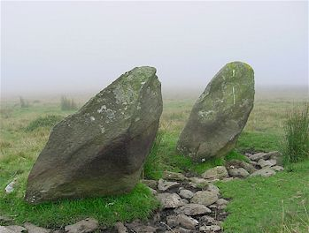 Two Old Stones